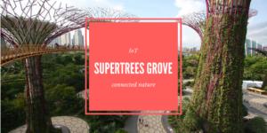 IoT : Supertrees, quand les arbres vous rendent la vi(ll)e plus belle