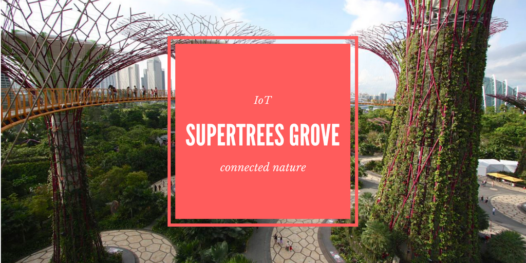 iot supertrees grove